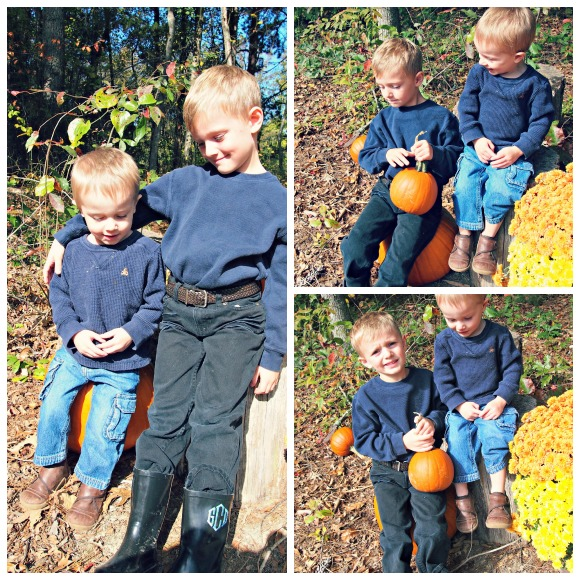 annual pumpkin pictures