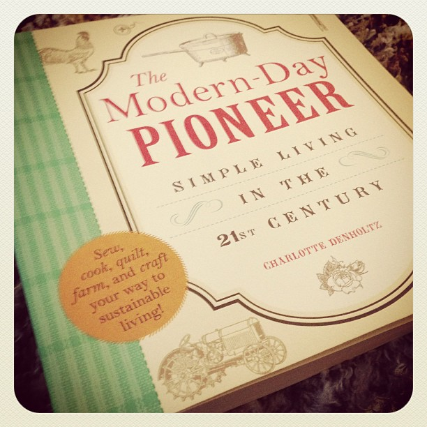 The Modern-Day Pioneer book review