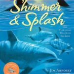 shimmer and splash book